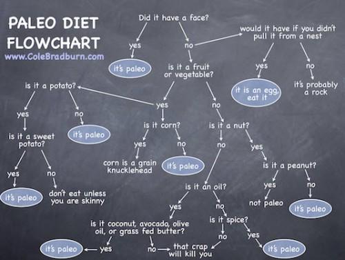 paleo_diet_flowchart-500x377